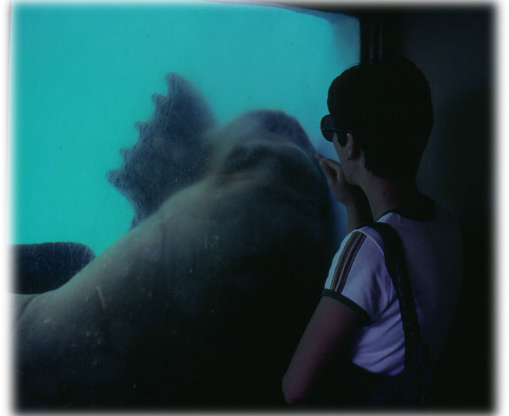 Joyce at Marineland of the Pacific