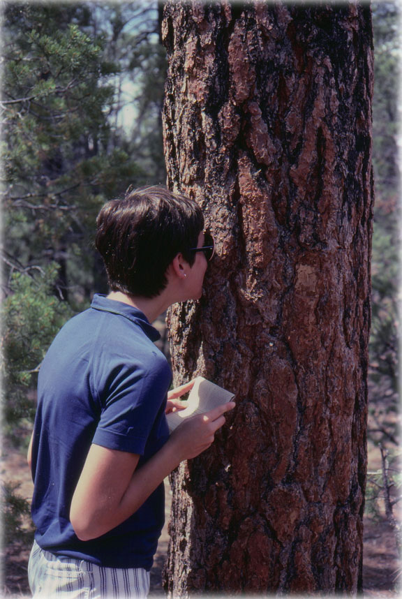 Joyce and a Ponderosa Pine