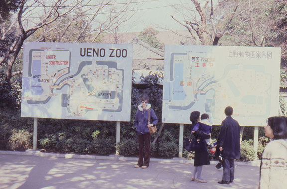 Joyce at the Ueno, Japan Zoo